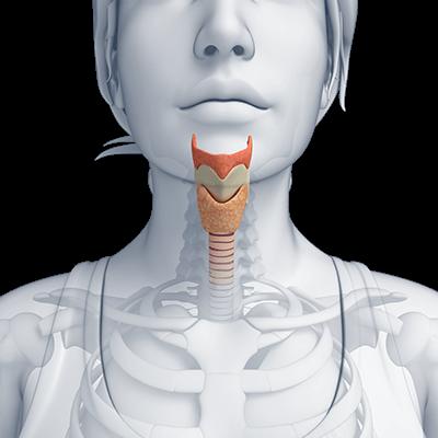 Atlanta Thyroid Disorder Treatment