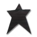 primitive star applique