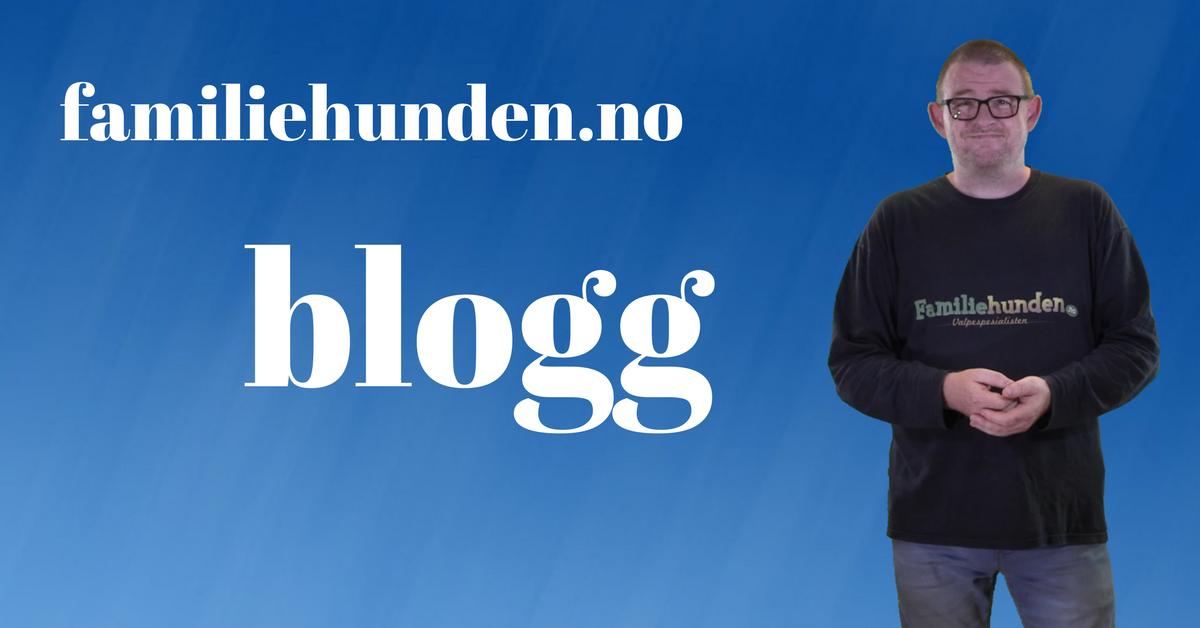 blogg for deg som har valp eller lurer på valpekurs