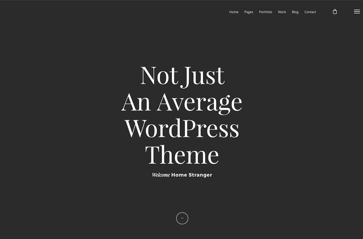 Wordpress Theme Salient