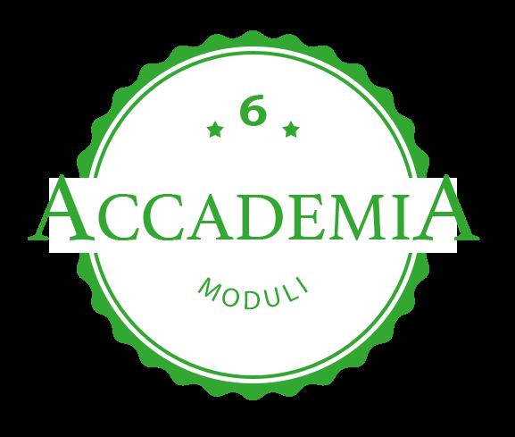 accademia online hair academy